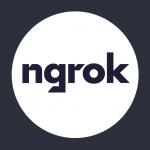 ngrok logo